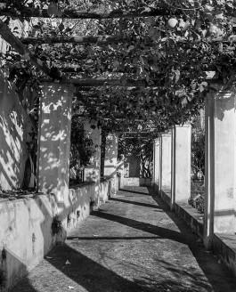 Il Giardino della Minerva