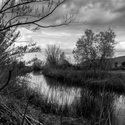 Parco Archeo-Fluviale di Longola